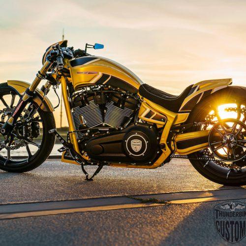 Thunderbike Silverstone